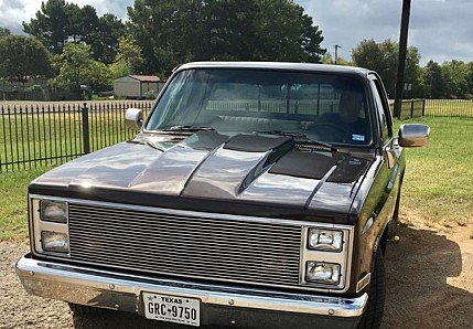 1987 chevrolet C/K Truck for sale 101019154